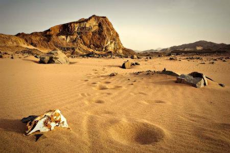 desierto-arabia-saudi.jpg